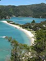 Torrent Bay from the Abel Tasman Coast Track.jpg