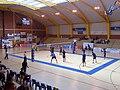 Tournoi volley Cambrai 2010.jpg