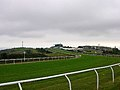 Towards the finishing line, Brighton Racecourse - geograph.org.uk - 51755.jpg