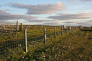 English: Track and Fences The track gives acce...