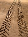 Tractor Tyre Marks in the Sand - geograph.org.uk - 932199.jpg