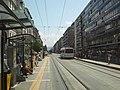 Tram and trolleybus at Servette stop.JPG