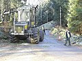Tree Felling for the Electricity Company - geograph.org.uk - 295939.jpg
