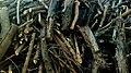 Tree wood Sticks.jpg