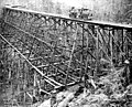 Trestle and logging railroad at Robinson's camp, Clallam County, Washington, probably 1900 (INDOCC 288).jpg