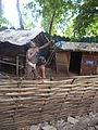 Tribal museum (Sadhu waswani path) (35).JPG