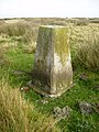 Trig point ESE of Birchdale House - geograph.org.uk - 247118.jpg