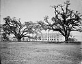 Tulane U Gibson Hall from Audubon Park New Orleans 1900.jpg