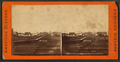 Twenty-eighth Street, Cairo, Illinois, from Robert N. Dennis collection of stereoscopic views.png