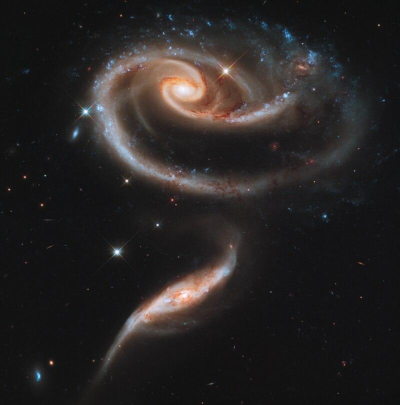 Le duo Arp 273, deux galaxies enroulées en forme de rose, photographiées par le télescope spatial Hubble.  (définition réelle 7887×7994)