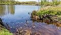 Uitzicht over de Bekhofplas. Locatie, natuurterrein Beekdal Linde Bekhofplas 07.jpg