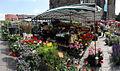 Ulm Market Platz DSC00784s.jpg