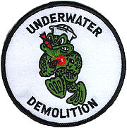 Underwater Demolition Teams shoulder sleeve patch
