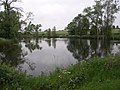 Undisturbed Lake. - geograph.org.uk - 444099.jpg