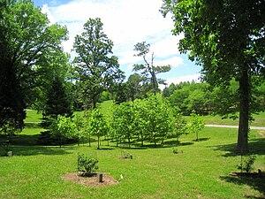 Image of University of Tennessee Arboretum: http://dbpedia.org/resource/University_of_Tennessee_Arboretum