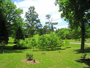 University of Tennessee Arboretum - University of Tennessee Arboretum