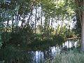 Valdavia river Abia de las Torres 001.JPG
