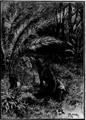 Verne - Le Superbe Orénoque, Hetzel, 1898, Ill. page 355.png