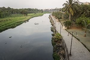 Musi River (India) - Musi river seen from Nayapul bridge in Hyderabad.