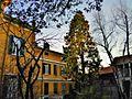 Villa ferrari 1720 fagnano olona-DSCN0308.JPG