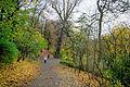 Volkspark schoeneberg wegab 07.11.2010 16-48-05.JPG