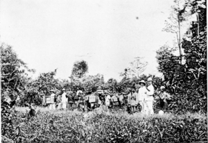 William Cowie (merchant) - Cowie and party travelling beyond the railway limit in North Borneo.