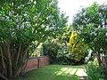 Walled garden of Edwardian terraced house in Cedar Road - geograph.org.uk - 822026.jpg