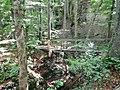 Wanderweg bei der Schwäbischen Alb - panoramio (6).jpg
