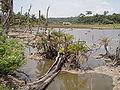Wandoor Village Andaman 4160284.JPG