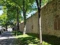 Warburg - mittelalterliche Stadtmauer am Graf-Dodiko-Weg.jpg