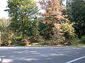 Washington Park - 2.jpg