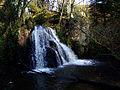 Waterfall in the Fairy Glen - geograph.org.uk - 692683.jpg