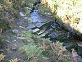 Waterfall on Little Willy's Sike - geograph.org.uk - 578897.jpg