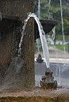 waterspuwer kikkertje