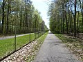 Weg entlang des KIT Campus Nord - geo.hlipp.de - 17728.jpg