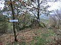 Weg zum Hirschsprung - panoramio.jpg
