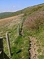 Western slopes of Smedmore Hill - geograph.org.uk - 769128.jpg