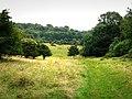 Whitcombe Bottom - geograph.org.uk - 946465.jpg