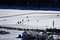 White Turf - St. Moritz - Suica (8746331414).jpg