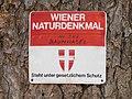 Wiener Naturdenkmal 589 - Baumhasel (Döbling) a.JPG