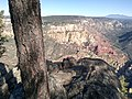 Wilson Mountain North Trail, Sedona, Arizona, Coconino County - panoramio (129).jpg