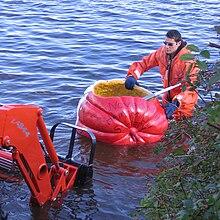 Windsor Pumpkin Regatta - Wikipedia