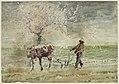Winslow Homer - Blossom Time in Virginia.jpg
