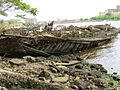 Wooden Wreck, Coney Island Creek, 2011, Courtesy, Elizabeth Albert.jpg