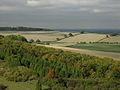 Woodland north of the Warren - geograph.org.uk - 667722.jpg