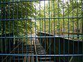 Wupperbrücke Gleisanschluss Schlossfabrik 03 ies.jpg