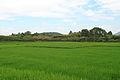 Wuyishan Chengcun Hancheng Yizhi 2012.08.24 10-55-14.jpg