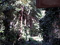 YAD BEN ZVI VIEW 10 20120912 151602.jpg