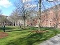 Yale University Old Campus.JPG