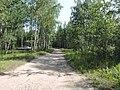 Yaroslavsky District, Yaroslavl Oblast, Russia - panoramio (112).jpg